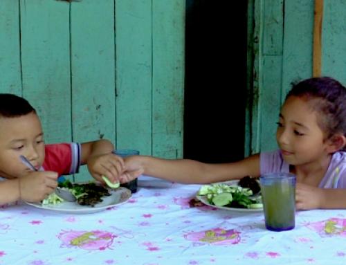 Ending Seasonal Hunger in Nicaragua