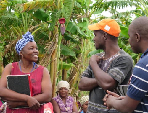 Report from the Field | Agroecology Training Course in Mozambique