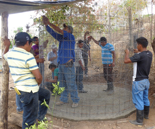Growing Coffee Food Forests | Youth Network Regional Exchange
